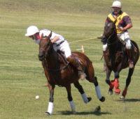 Polo at Willow Ridge