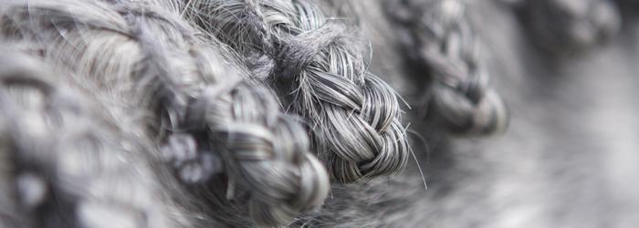 Aedan's braids