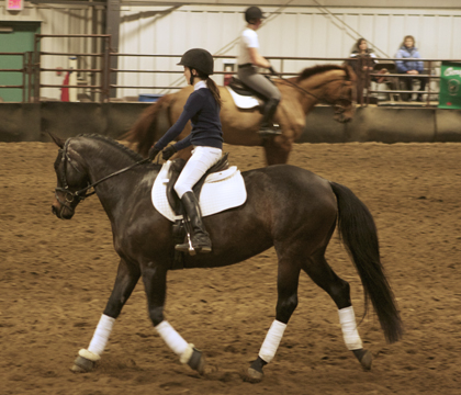 Dressage clinic at Sask. Equine Expo