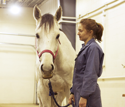 Laura Field, veterinary student