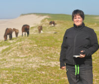 Sarah Medill records location and descriptions of a band of horses on Sable Island. Photo: Kathrine Stewart.