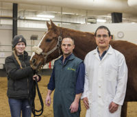 Morgan Ashdown with Jack and her horse's WCVM surgeons, Drs. James Carmalt and Andres Sanchez. Photo: Christina Weese.