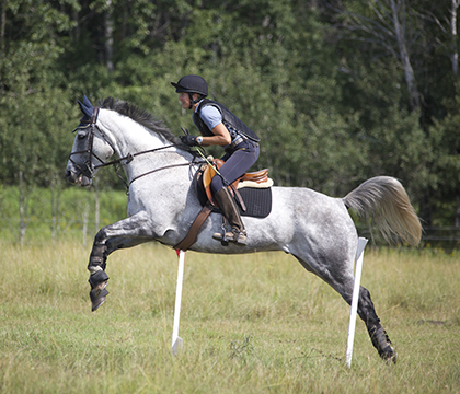 A horse's body is like a suspension bridge: the front limbs are attached through muscles and function like a sling as the body propels forward. Photo: Myrna MacDonald.