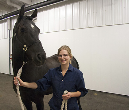 Kirsten Henderson spent her summer researching nerve blocks to identify the source of pain in horses. Photo by WCVM Today.