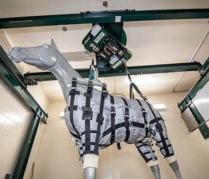 lift-harness